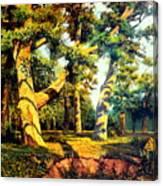 Green Summer-the Oak Forest Canvas Print