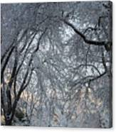 Ice Storm On The 6th II Canvas Print