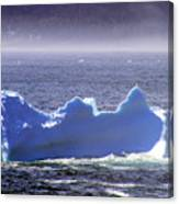 Iceberg Floating By Canvas Print