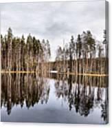 Liesilampi Panorama Canvas Print