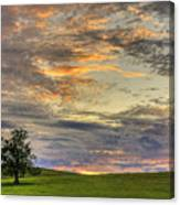 Lonley Tree Canvas Print