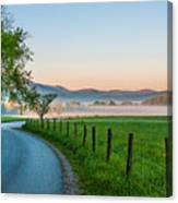 May Morning In The Cove Canvas Print