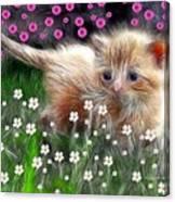 Mouse Hunter Canvas Print