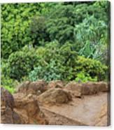 Muddy Kalalaua Trail - Kauai Canvas Print