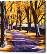 Road Of Golden Beauty Canvas Print