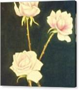 Roses In Full Bloom Canvas Print