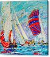 Sail Of Amsterdam II - Tree Sailboats  Canvas Print