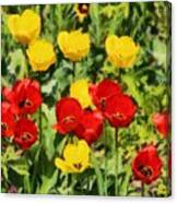 Spring Landscape With Tulips Canvas Print