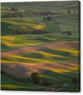 Steptoe Butte 10 Canvas Print