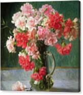 Still Life Of Carnations   Canvas Print