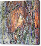 Storm 2 Canvas Print