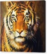 Tiger Head, Color Oil Painting On Canvas. Canvas Print