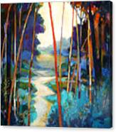 Waterpath Canvas Print