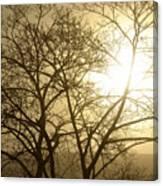 01 Foggy Sunday Sunrise Canvas Print