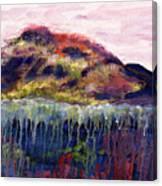 01252 Big Island Canvas Print