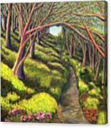 01350  Spring  Canvas Print