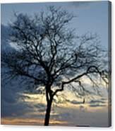 016 April Sunsets Canvas Print
