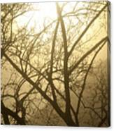 02 Foggy Sunday Sunrise Canvas Print