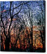 0223 Canvas Print