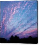 03262013021 Canvas Print