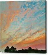 03262013023 Canvas Print