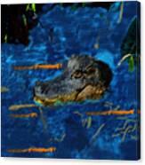 04142015 Gator Hole Canvas Print