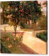 Garden Alcazar Seville Canvas Print