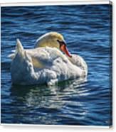 071118-50-c Canvas Print