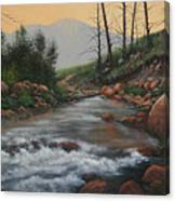 090430-1216   Trout Creek - Spring Canvas Print