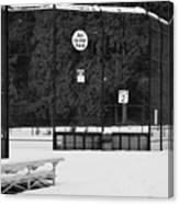 Snowy Field  Canvas Print