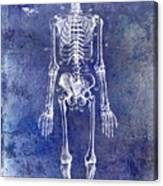 1911 Anatomical Skeleton Patent Blue Canvas Print