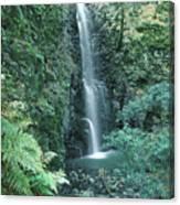 1b6351 Diamond A Waterfall Canvas Print