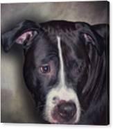 8332456 Canvas Print