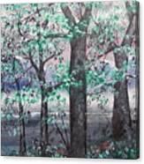 A Bright Night Canvas Print