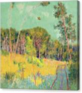 A Clearing In The Forest Canvas Print