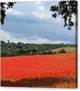 A Field Of Red Poppies Canvas Print