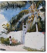 A Garden In Nassau Canvas Print