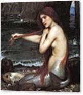 A Mermaid John William Waterhouse Canvas Print