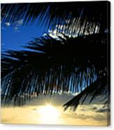 A Tropical Sensation Canvas Print