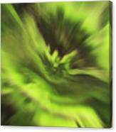 Abstract Aurora Canvas Print
