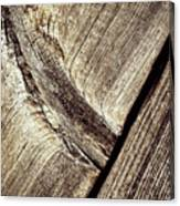 Abstract Detail Of A Wooden Old Board Canvas Print
