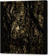 Abstract Gold And Black Texture Canvas Print
