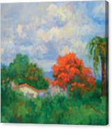 Acacias And Red Roofs Canvas Print