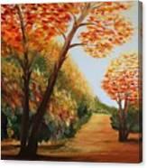 Acrylic Msc 164 Canvas Print