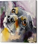 Adopt125 Canvas Print