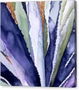 Agave 3 Canvas Print
