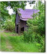 Aging Barn In Woods Series Canvas Print