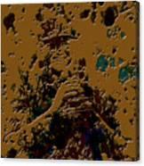 Alex Rodriguez 2b Canvas Print