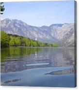 Alpine Clarity Canvas Print