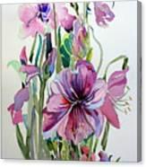 Amaryliss Canvas Print
